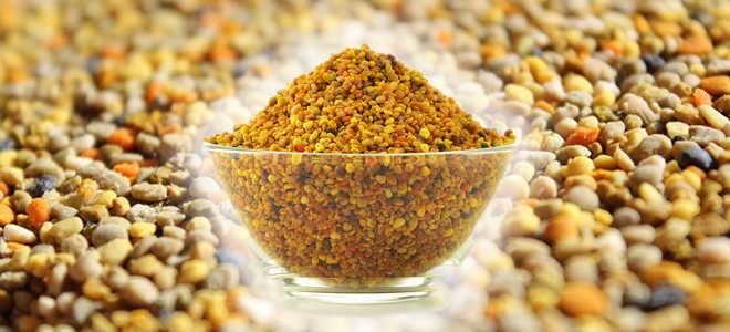 Пчелиная пыльца: полезные свойства и как принимать