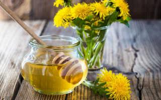 Мед из одуванчиков: польза, состав и рецепты приготовления