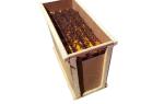 Пчелопакеты – что это такое, как их формируют и содержат
