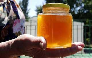 Башкирский мед: аккураевый, как отличить от подделки