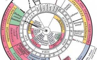Календарь работ пасечника по месяцам