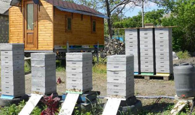 Альпийский улей для пчел