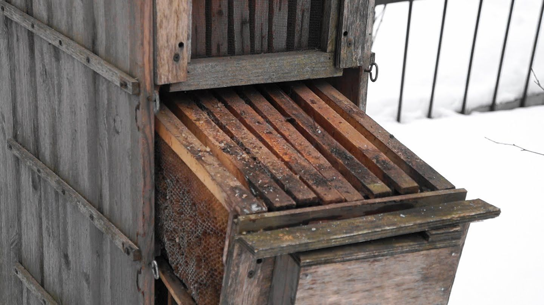 Кассетный улей для пчел