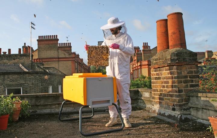 Новые и современные методы пчеловодства в России и за рубежом