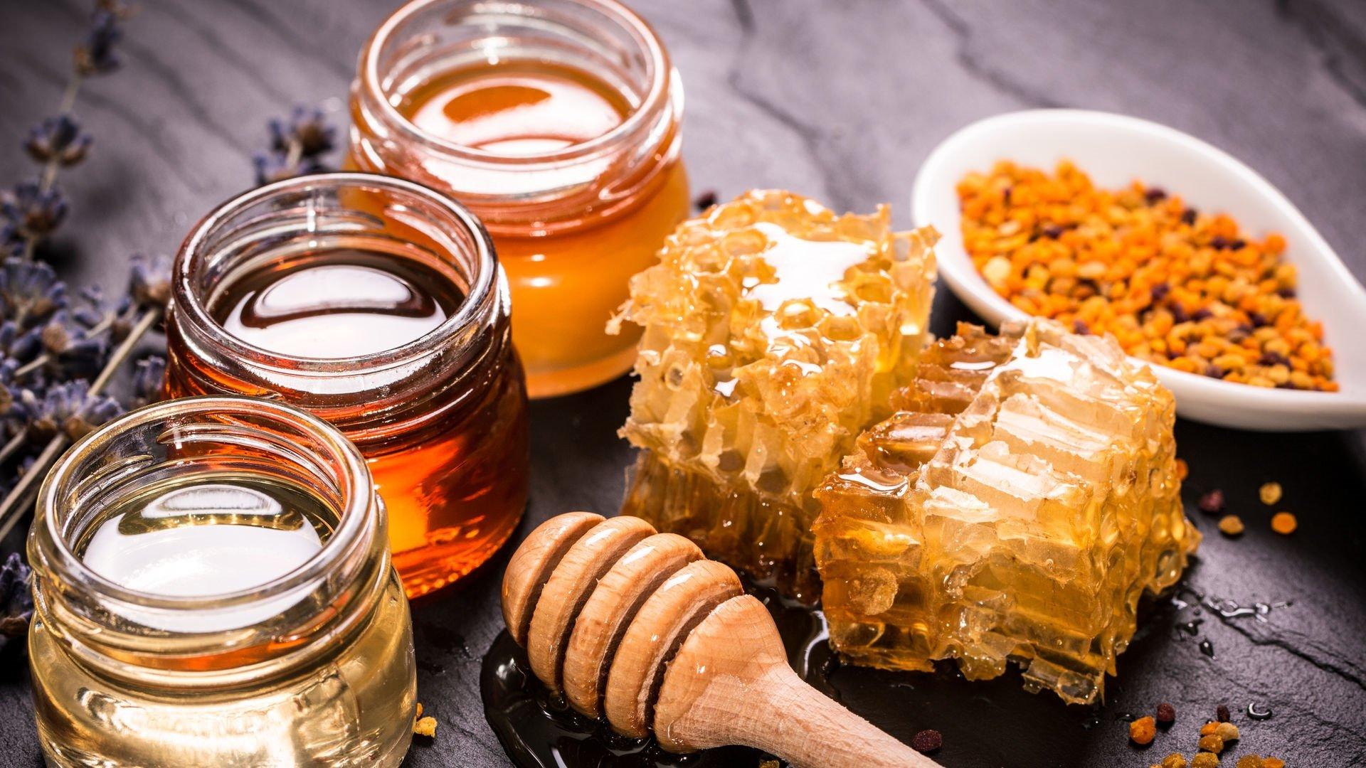 разные виды меда, соты и перга